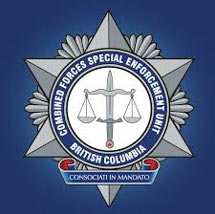 Combined Forces Special Enforcement Unit logo